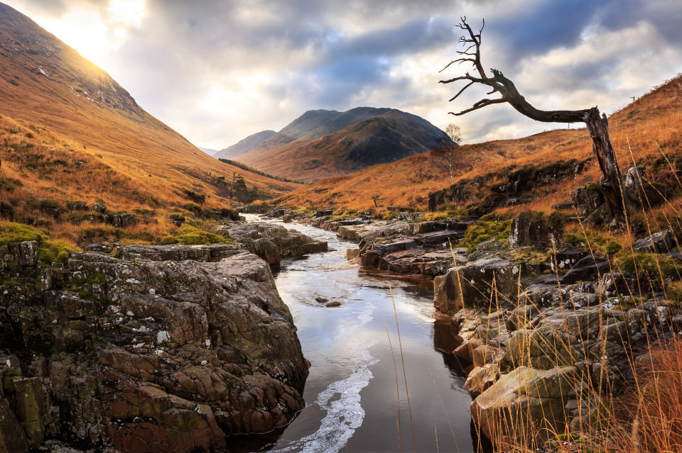 The-official-photographers-scotland-highland-stream-river-alone-tree-sunset