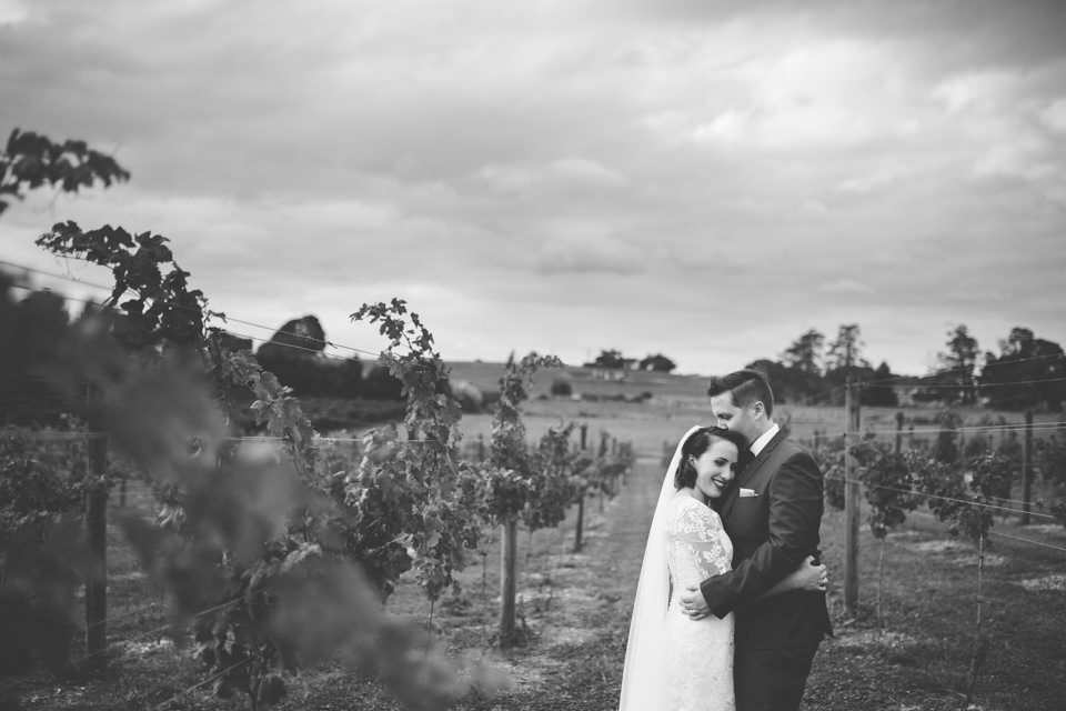 The-official-photographers-Daniel-Lindsay-Vilagrad-Winery-Wedding-_MG_4426