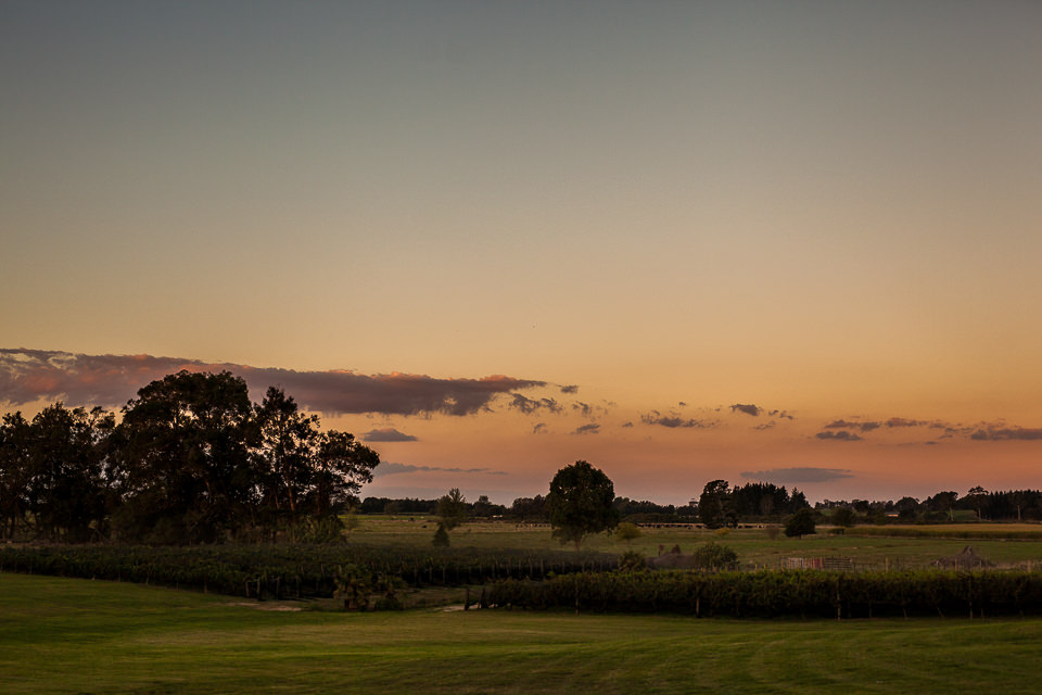 The-official-photographers-Sara&Drew-Vilagrad-Winery-_MG_0192-2