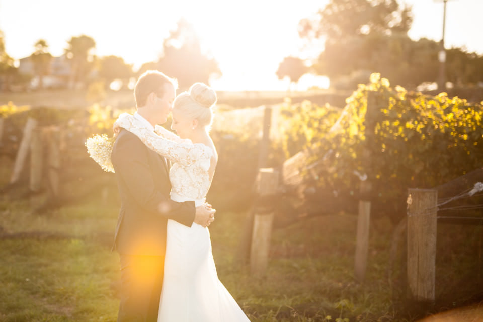 The-official-photographers-Sara&Drew-Vilagrad-Winery-_MG_0798
