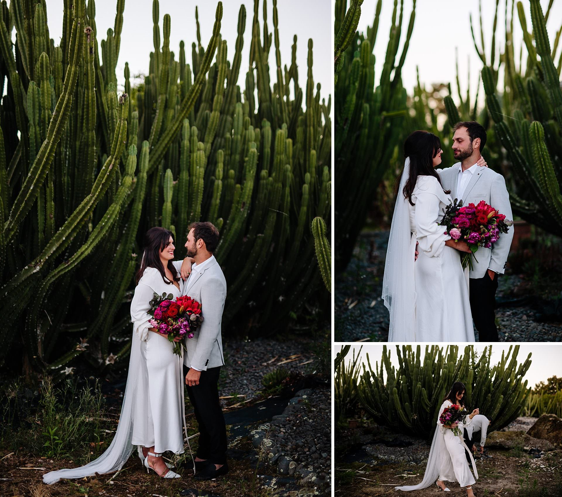 Hamilton Cactus Garden wedding photo of bride and groom at sunset