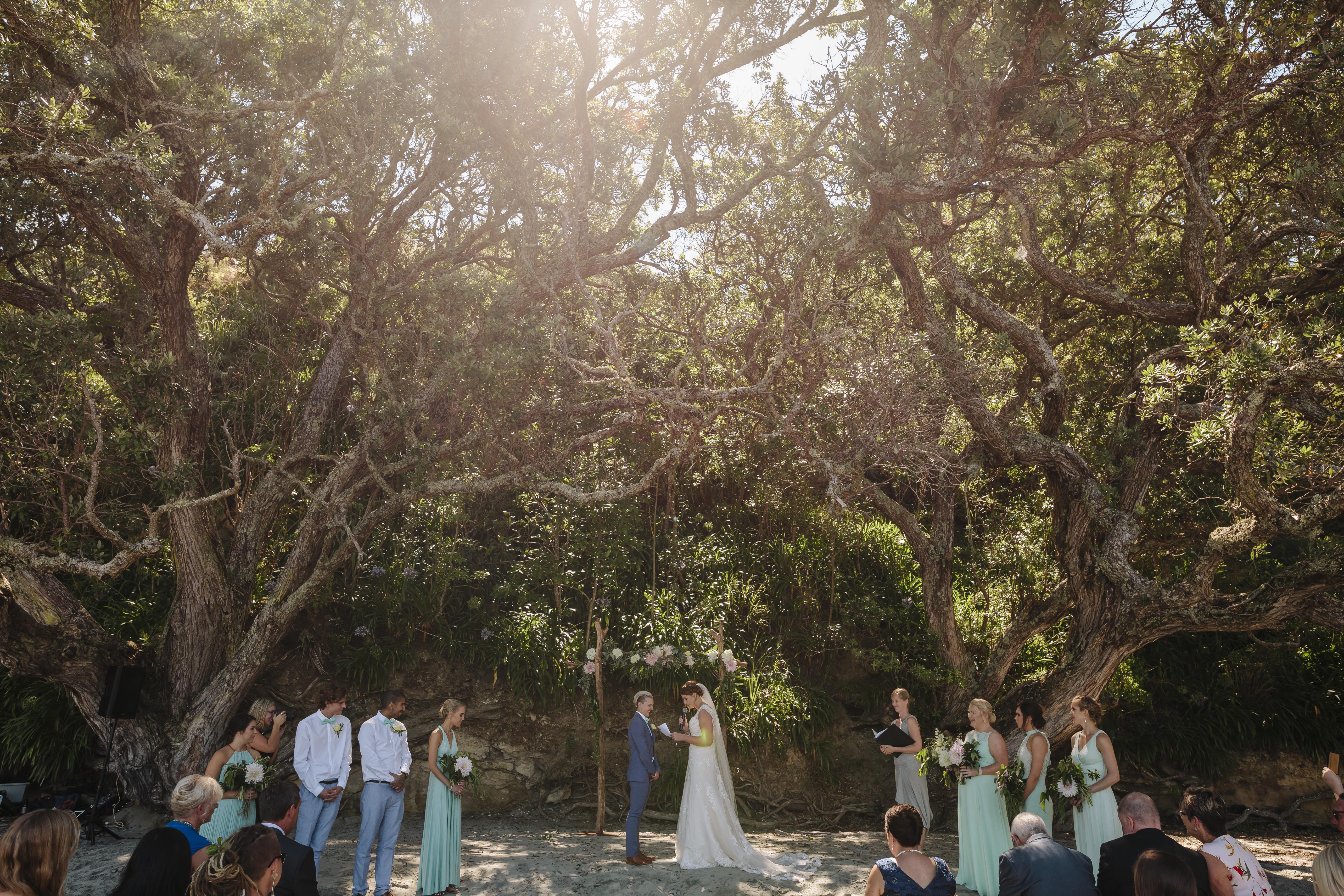 amanda-tash-the-official-photographers-wedding__mg_9448