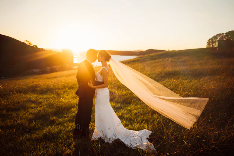 waiheke island wedding sunset photo of wilhelmina shrimpton